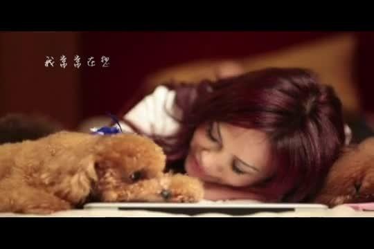 荷莉婚紗_微電影 寵物篇